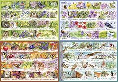 Gibsons Games Puzzle: 2000 Woodland Seasons in Jigsaw Puzzles. Puzzle Club, Puzzle Shop, Four Seasons Art, Origami Animals, Goldfinch, Book Of Shadows, Puzzle Pieces, Woodland, Jigsaw Puzzles