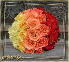A fun ombre rose bouquet is a stunning option for rainbow wedding. Bouquet Bride, Rose Bouquet, Wedding Bouquets, Wedding Flowers, Rose Wedding, Flower Bouquets, Wedding Colors, Dream Wedding, Bride Flowers