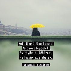 Esti Kornél - Rohadt Eső