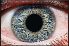 Eye | Iris | Pupil | 目 | œil | глаз | Occhio | Ojo | Color | Texture | Pattern | Macro | Iris by Kenan Kurtagic