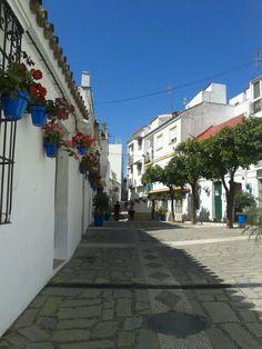 Paseando por Estepona