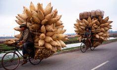 loaded bikes, Hanoi, Vietnam
