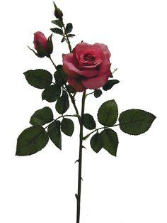 Linda rosa na cor rosa pink, com 1 botão aberto pequeno, 1 botão semi-fechado pequeno e outro botão fechado pequeno, qualidade extra | Referência: 1356800000481 | Altura: 58 cm | Composição: Tecido, Plástico e Arame