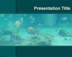 PowerPoint de Acuario es un fondo de PowerPoint con pecesitos y con imagen de acuario en PowerPoint para presentaciones que tengan que ver con animales marinos o también con acuarios