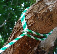 tree swing rope knot Build a Tree Swing for Two in the Backyard
