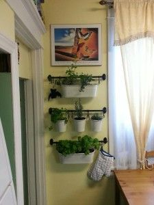 excellent indoor herb garden idea... need to do this over the weekend!