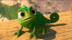 Les meilleurs GIF de Pascal   Disney Divertissement