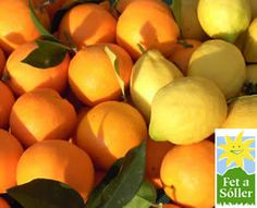 Mischkiste Orangen, Sorte je nach Jahreszeit, und supersaure Zitronen, bei www.fetasoller.com