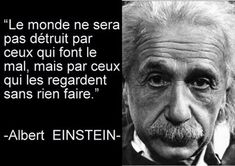Citation Albert Einstein Pour plus -> anais_Fbg Citation Einstein, Albert Einstein Quotes, Brainy Quotes, Life Quotes, Meaningful Quotes, Inspirational Quotes, Fitness Gym, Artist Quotes, French Quotes