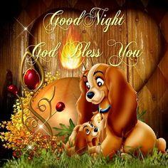 ❤️️️Good Night & God Bless❤️May you all have a restful nights sleep. Good Night Sleep Tight, Cute Good Night, Night Love, Good Night Sweet Dreams, Good Night Moon, Good Night Image, Good Morning Good Night, Evening Greetings, Good Night Greetings