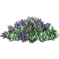 Flower Garden Clip Art Free | Скачать PNG фото в высоком разрешении ...