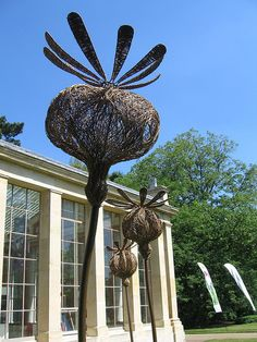 Tom Hare | Giant wicker sculptures celebrating Kew's Milennium Seed Ban