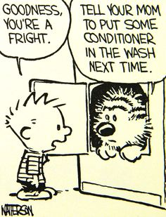 Calvin and Hobbes (one of my older originals DA) Tell your Mom to put some conditioner in the wash next time.
