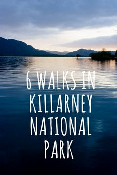 National Park Walks - 6 Scenic Trails 6 Dramatic Walks in Killarney National Park, Co. Dramatic Walks in Killarney National Park, Co. County Cork Ireland, Galway Ireland, Ireland Killarney, Belfast Ireland, Ireland Hiking, Ireland Travel, Ireland Camping, Le Connemara, Ireland Landscape