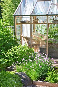 Hydroponic Gardening, Hydroponics, Back Gardens, Outdoor Gardens, Outdoor Spaces, Outdoor Living, Summer House Garden, Vintage Gardening, Green Fruit