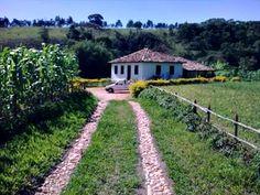 Roça lirios do campo.: ainda hoje sei o chão era verdinho, macio as nuven...