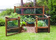 Great set up for a veggie garden - elevated and caged to keep sneaky dogs and rabbits out!