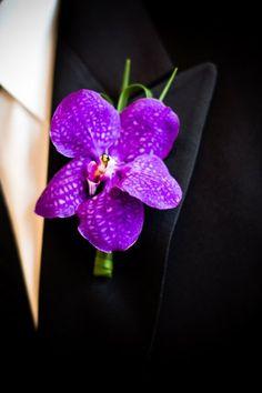 Purple Orchid #Boutonniere I LOLA Event Productions I http://www.weddingwire.com/biz/lola-event-productions-chicago/portfolio/4bd274bf3bc117fe.html?page=5&subtab=album&albumId=19e0efb76c63d69f#vendor-storefront-content