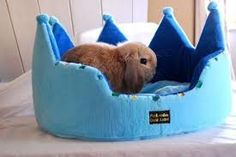 really cute bunny bed