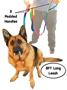 Dog Leash - Bright Rainbow Color - Dogs Supplies for Large Dog - 2 Handles 1 Leash Dog Training - 8ft Long or 6ft Long Super Tough - Handle Padded >>> More info could be found at the image url.