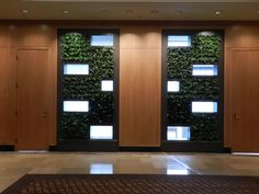 Image result for green wall around window inside