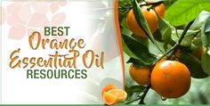 There's no better way to enjoy the refreshing scent of oranges than by picking up a bottle of orange essential oil. In addition to possessing a marvelous fragrance, orange essential oil can do everything from tackle depression to repel bugs. This magical product can improve your life in a variety of ways without breaking the bank.
