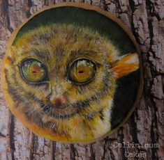 Tarsier: Animal Rights Collaboration  by Callicious Cakes
