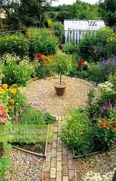 - Stock photo from GAP Gardens, garden & plant photography Cottage Garden Design, Garden Design Plans, Garden Landscape Design, Small Garden Plans, Circular Garden Design, Small Garden Design, Circular Patio, Gravel Garden, Garden Shrubs