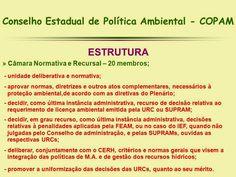 http://engenhafrank.blogspot.com.br: O QUE É O CONSELHO ESTADUAL DE POLÍTICA AMBIENTAL ...