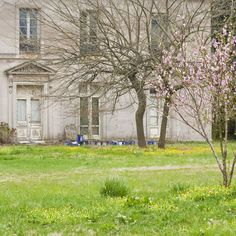Horace Trumbauer's Lynnewood Hall Hits the Market at $20M - Curbed Phillyclockmenumore-arrownoyes :