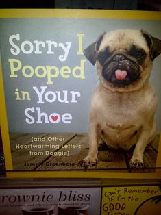 I don't know if its the pug or the title but this is great.