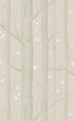 Papier peint Woods and Stars
