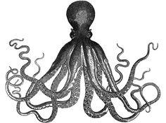The Octopus Triptych -A DIY Art Project Idea