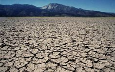 Forecast suggests dry conditions into spring, drought disaster declared