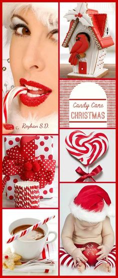 '' Christmas ~ Candy Cane '' by Reyhan S.D.