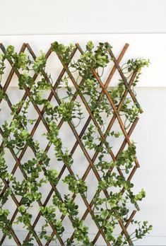 This Faux Boxwood Lattice Screen adds appeal to any place you put it. Requires no maintenance, UV stable to resist fading and weather resistant, making it perfect for outdoor or indoor use. Lattice Screen, Lattice Wall, Boxwood Landscaping, Small Backyard Landscaping, Rooftop Garden, Balcony Garden, Decoration Design, Diy Pergola, Pergola Kits