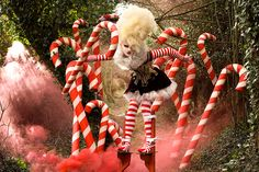 The Candy Cane Witch - Wonderland - Kirsty Mitchell