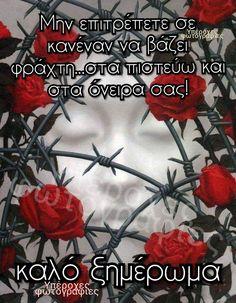 Beautiful Pink Roses, Good Night, Beautiful Pictures, Nighty Night, Pretty Pictures, Good Night Wishes