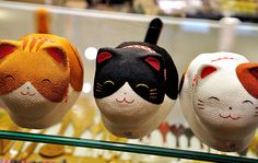 adorable little japanese cats   I WANT THEM!!