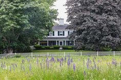 The Chase House, 1803 Federal style Home. Perfectly positioned for all the seasons. In the Spring the home is surrounded by Lupine, a mix of all the colors dancing in the wind. The Summers are for relaxing on the porch in the shade of the Maple Trees in the front yard, maybe a stroll through the formal gardens. The Fall is for enjoying the colors of the trees that surround the pond and create magic images on the ponds surface. Winter is for skating. The pond becomes the perfect area for…