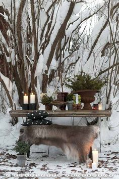 love this winter table Winter Magic, Winter Snow, Winter Christmas, Winter House, Winter Garden, Yule, Outdoor Spaces, Outdoor Living, Deco Table Noel