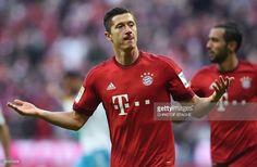 Bayern Munich's Polish striker Robert Lewandowski celebrates scoring during the German first division Bundesliga football match FC Bayern Munich vs Schalke 04 in Munich, southern Germany, on April 16, 2016. / AFP / CHRISTOF