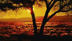 African sunset (cross stitch) I would love to do this for my dad in Angola