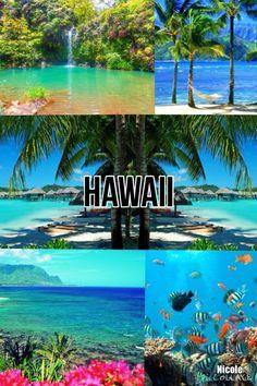 Hawaii By Nicole♡