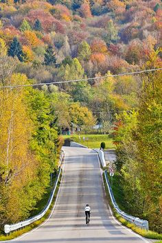 by smashred, via Flickr  #autumn #fall #belluno #road #nevegal