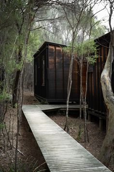 Amongst The Fragrant Native Flora, Friendly Beaches Lodge Humbly Welcomes Hikers From The Trail With A Rustic Warmth And Charm. Future House, My House, Cabin In The Woods, Forest House, Sauna, Lodges, Black House, Interior Architecture, House Design
