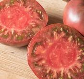 Cherokee on of the most popular heirloom tomatoes Tomato Seeds, Heirloom Tomatoes, Hydroponics, Cherokee, Popular, Vegetables, Food, Vegetable Gardening, Tomato Seed