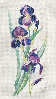 Elegant blue flowers on a patterned background.
