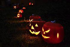 Halloween | Flickr - Photo Sharing!