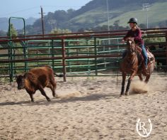 We're excited to support the CalPoly Performance Horse Sale this weekend! Find out more at http://ranchhorse.calpoly.edu/.